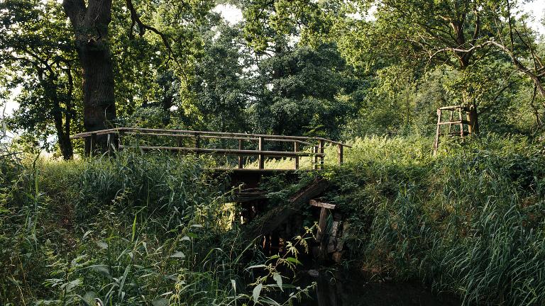 Filmlocation alte Brücke über Bach im Wald